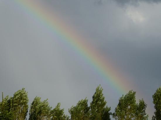② 虹.JPG