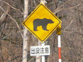 13 動物注意④.jpg