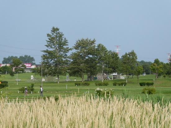 パークゴルフ場2.JPG