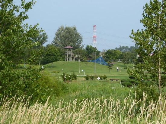 パークゴルフ場3.JPG
